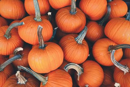 8 healthier pumpkin spice foods to satisfy your fall cravings