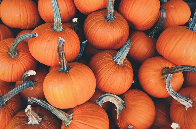 Thumbnail for 8 Healthier Pumpkin Spice Foods to Satisfy Your Fall Cravings