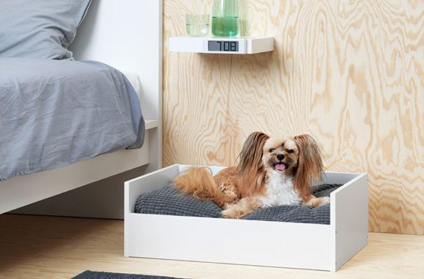 Ikea's new pet furniture wants your healthy home to be more fur-friendly