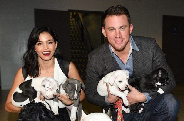 6 celebs who are the epitome of relationship #goals—with their pets