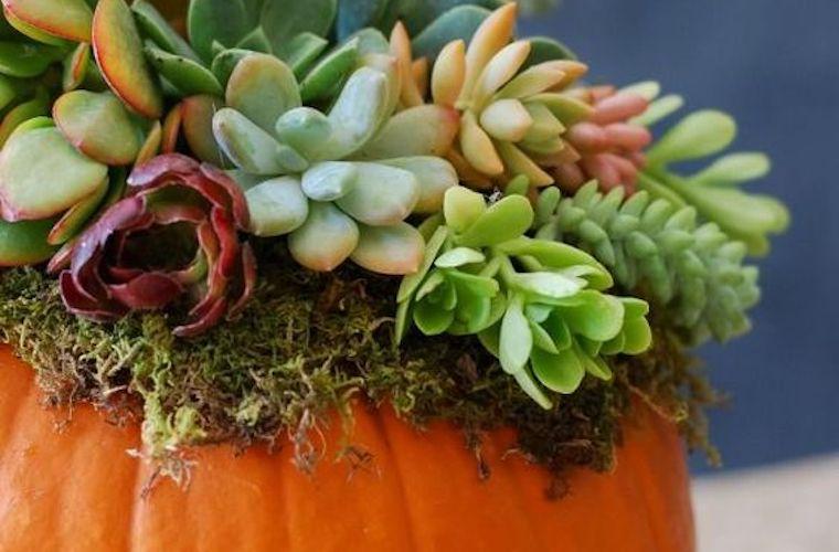 Thanksgiving decoration ideas from Pinterest