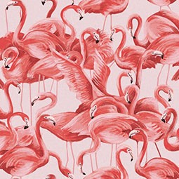 Thumbnail for This pretty pink flamingo wallpaper will take you one step closer to nature