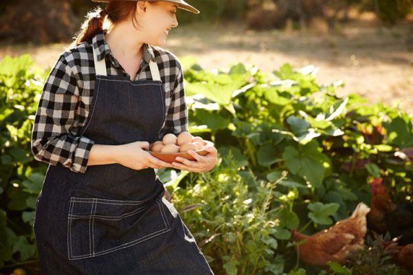 Thumbnail for The differences between organic and non-organic meat just got a lot smaller