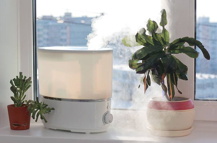 Thumbnail for These 9 top-rated, skin-saving humidifiers on Amazon want to winterize your healthy home