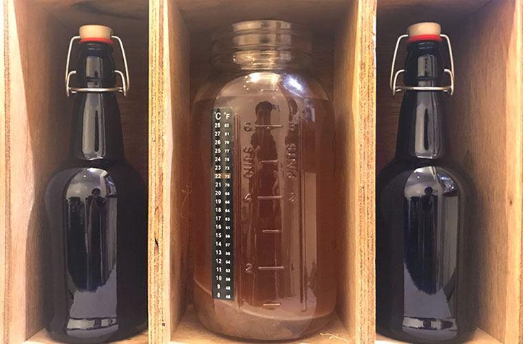Home-brewed kombucha fermenting