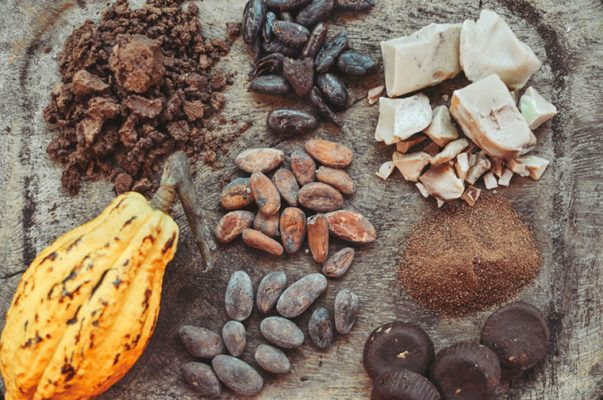 Thumbnail for Chocolate's years may be numbered—can science change that?