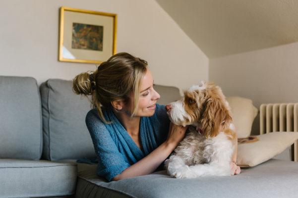 Here's how to keep your pup safe from the dog-flu outbreak