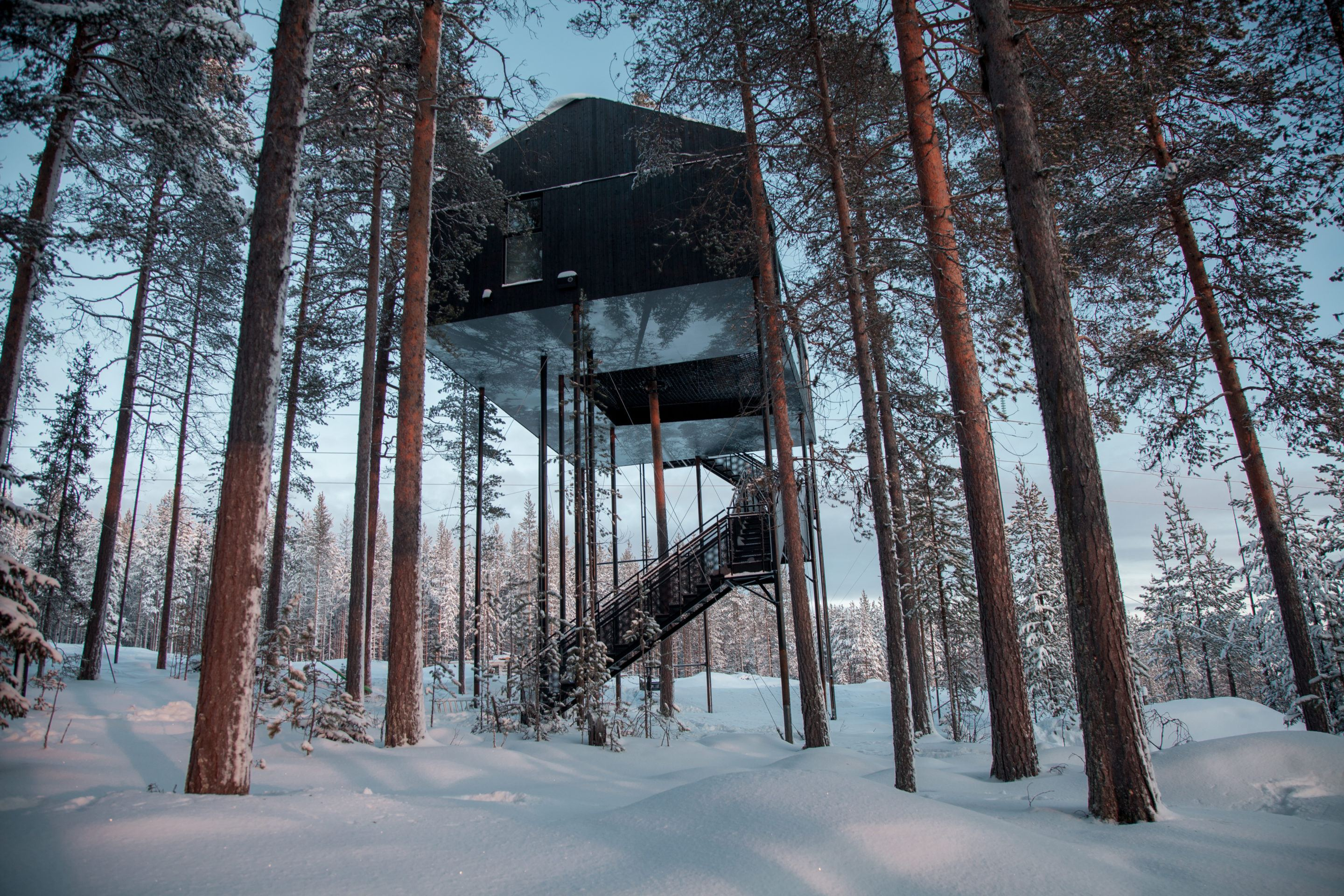Hotels that feel like you are sleeping in nature.
