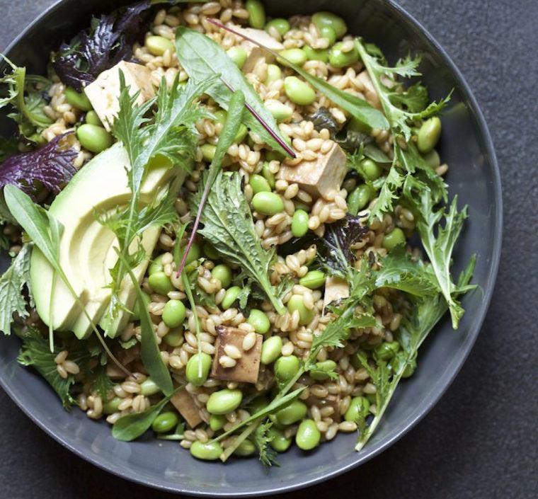 Candice Kumai barley bowl