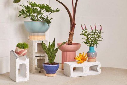 9 planters and vases that double as chic sculptures in small living spaces