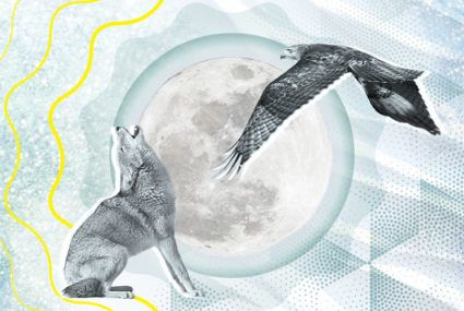 Your energy horoscope for February: Get pumped, because it's time to fly high