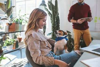 These pet-friendly offices are hiring right now