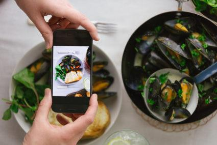 Could a smartphone app identify food bacteria?