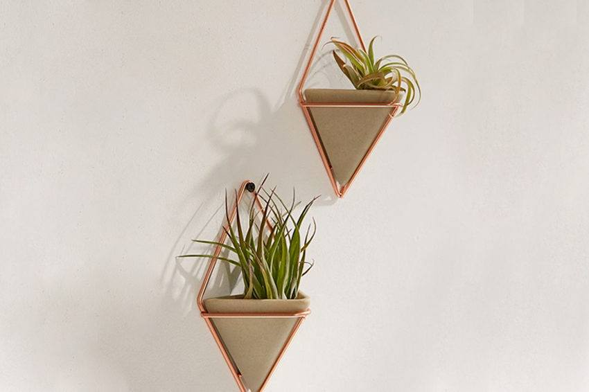6 wall planters that will breathe new life into your home