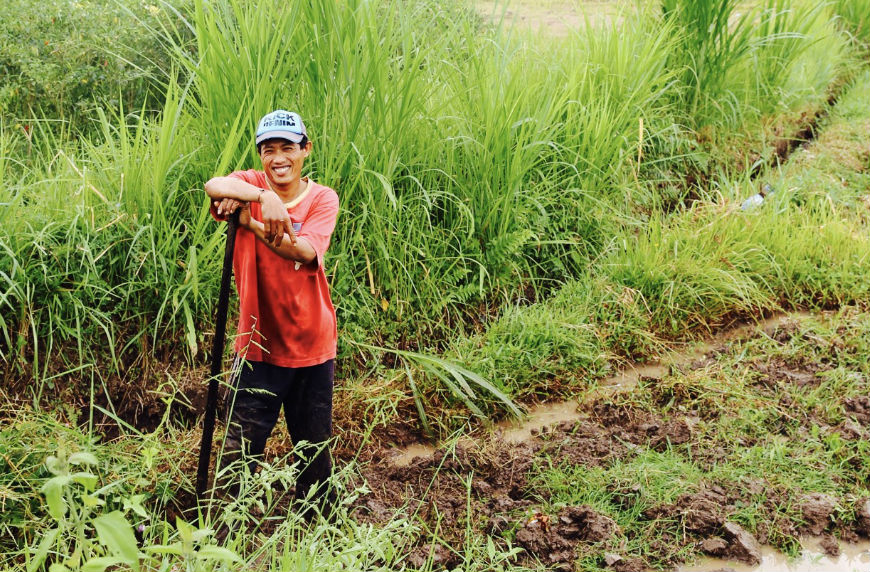 A farmer in Bali