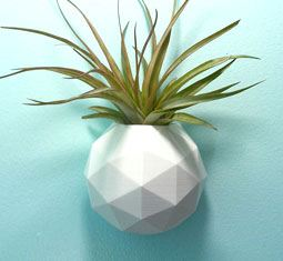 Thumbnail for 6 wall planters that will breathe new life into your home