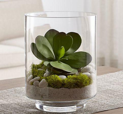 Terrariums Gardens For Small Spaces Well Good