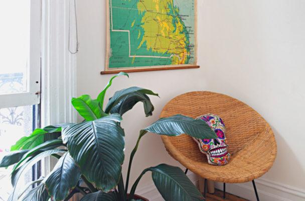 Thumbnail for This new home decor trend pulls double duty as healthy travel inspo