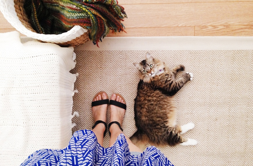 Thumbnail for Why your rug is shedding (and how it could be bad for your health)