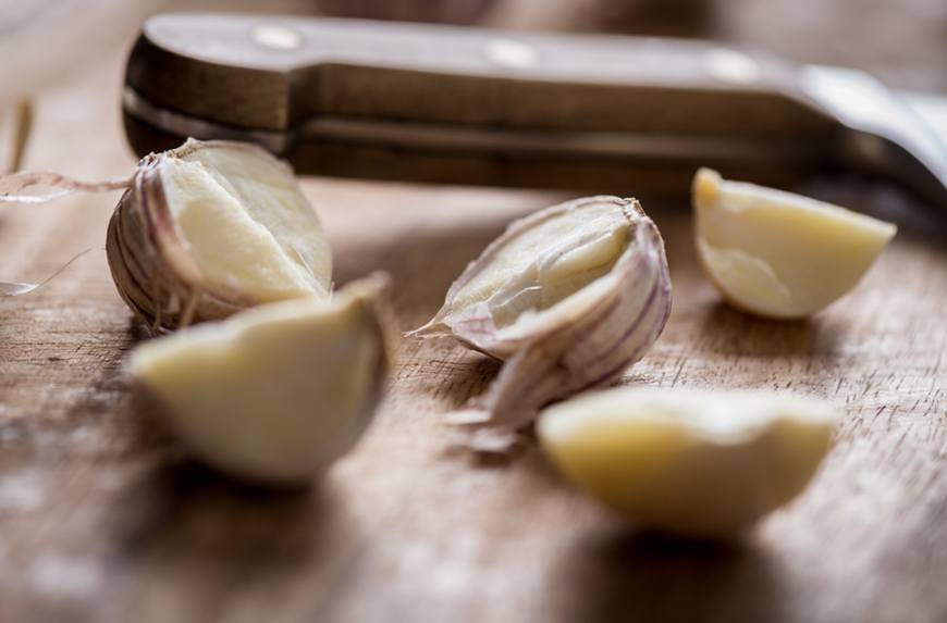 The validity of garlic as a cold remedy.