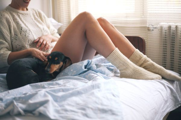 Should you worry about germs if your dog sleeps in your bed?