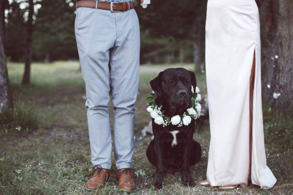 A new on-the-rise wedding trend, according to Etsy? Pets!