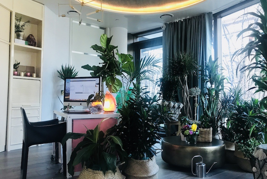 Thumbnail for You're going to want to replicate Sophia Gushée's plant-filled office ASAP