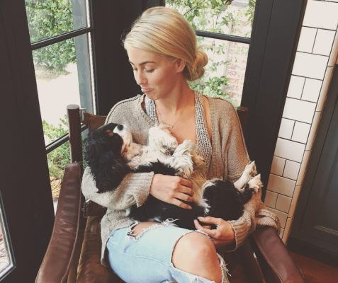 The wellness treatment Julianne Hough swears by for her dogs