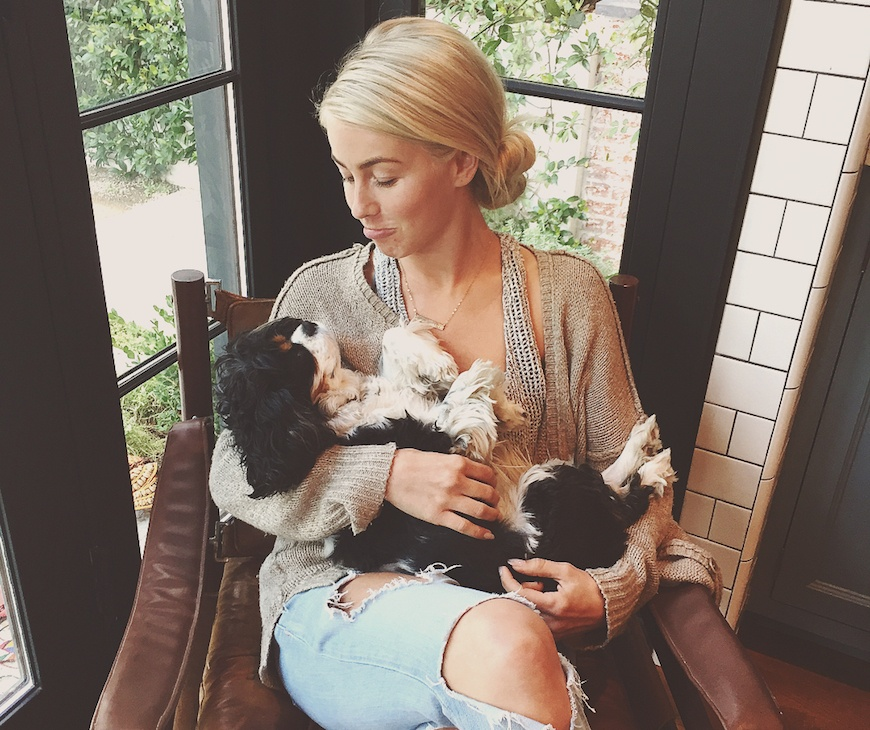 Thumbnail for The wellness treatment Julianne Hough swears by for her dogs