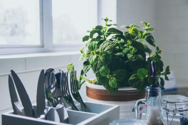 This is how often you should be getting rid of every product in your kitchen