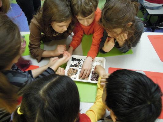 How one non-profit is revolutionizing the way kids eat and play at school