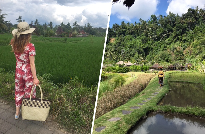 Kelsey Patel visits the rice fields of Bali.