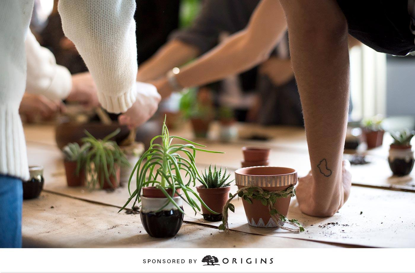 Thumbnail for 2 simple ways to green the planet—and your living space