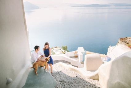 Bringing your dog on honeymoon could be trending