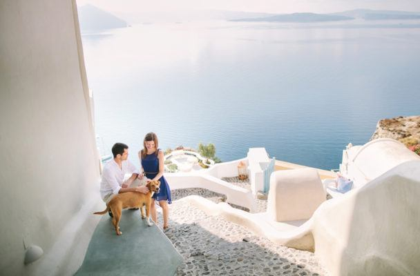 Want your pet to join your honeymoon because of separation anxiety? You're not alone