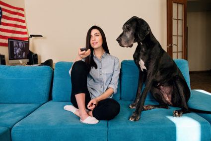 Prefer to binge-watch with your pet? You're hardly alone, survey results show