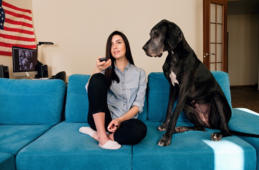 Thumbnail for Prefer to binge-watch with your pet? You're hardly alone, survey results show