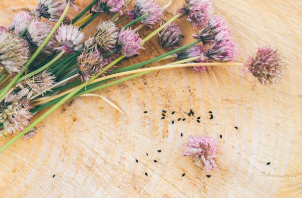 These centerpieces made from flowering herbs are pretty *and* functional