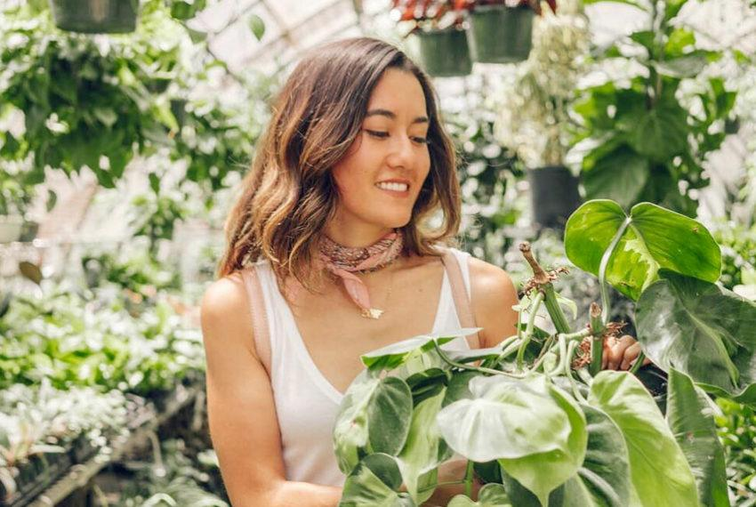 Calling All Plant Ladies: Here's a 2-Step, Nontoxic Routine to Rid Your Plants (and Home!) of Bugs