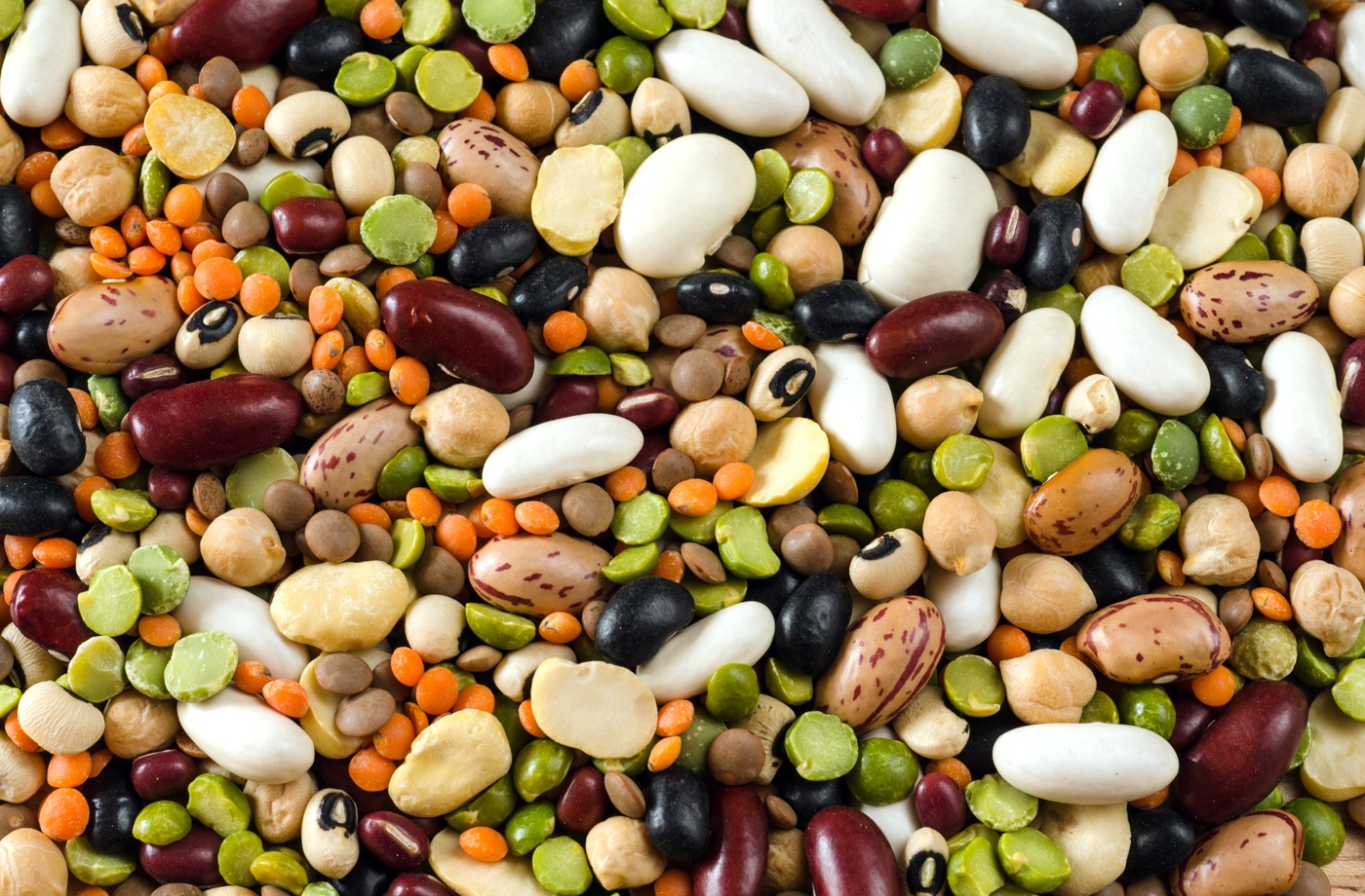 Thumbnail for The 6 most nutrient-dense foods that should rule your diet