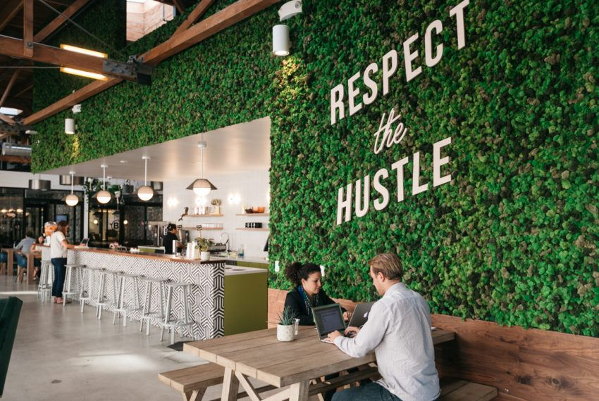 WeWork's latest eco-friendly move is becoming a totally meat-free organization