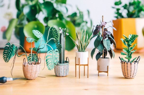 This artist creates itty-bitty paper plants that you'll want in every nook of your healthy home