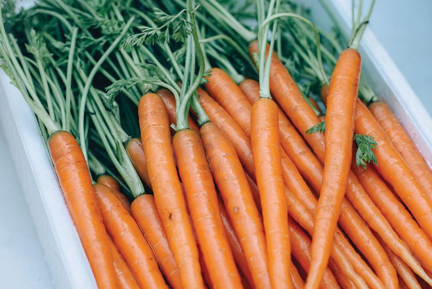 This 3-second, bouquet-inspired hack keeps your veggies fresh longer in the fridge