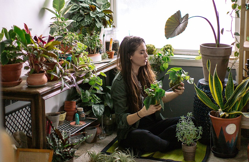 Why Sweet Potato Vines Are Every Plant Lady S New Obsession Well Good