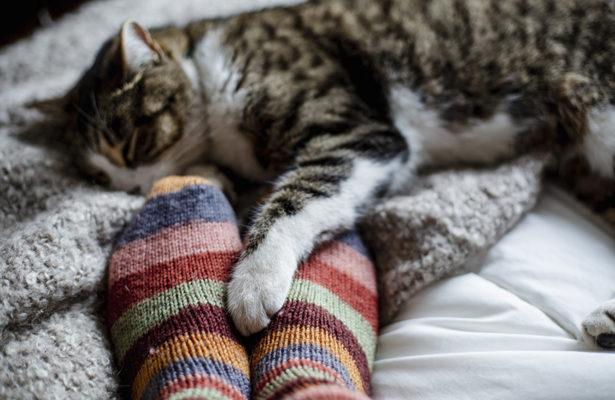 The Only Pairs of Cozy Socks You'll Need This Winter