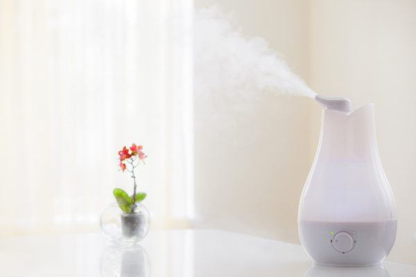 How to make sure your humidifier isn't making you sick