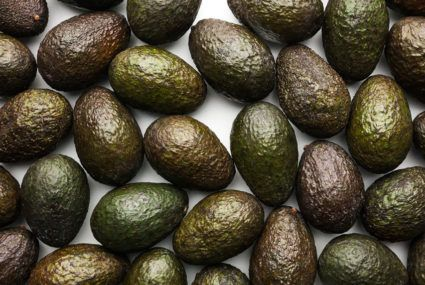 Alert! A legit avocado shortage is upon us, so we're all at risk of toast withdrawal