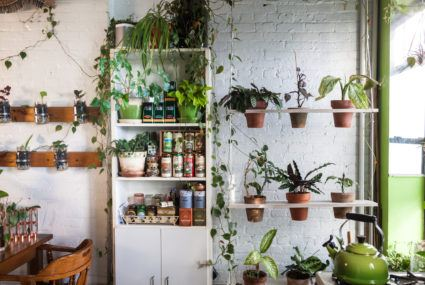 Running out of room for plants? A vertical garden will let you keep feeding your obsession