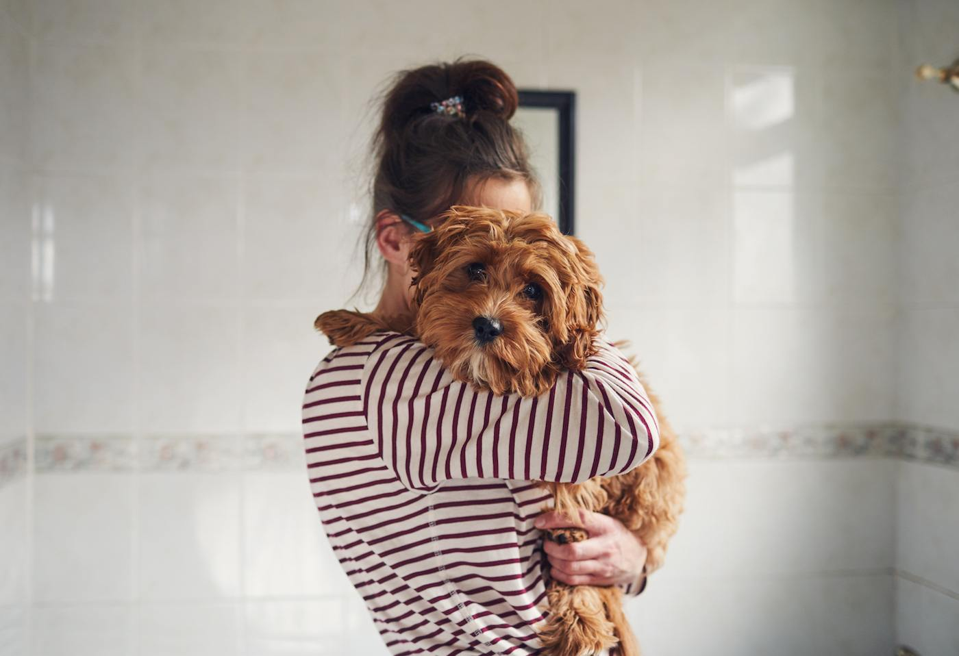 Thumbnail for Losing a pet in a breakup is the hardest part of splitting no one talks about—here are tips to deal