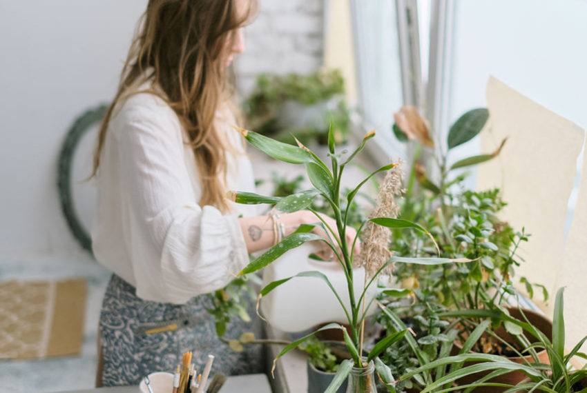 Help Your Houseplants Get Properly Lit With a Super Pretty DIY Grow Light